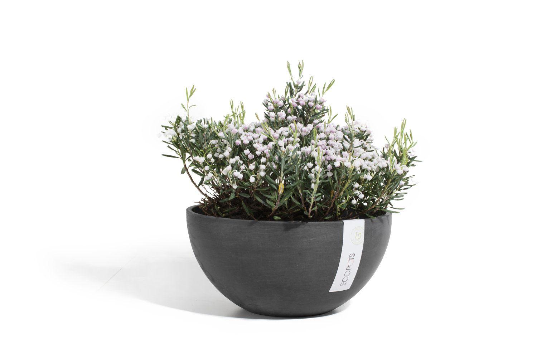 ECOPOTS Brussels low round flower pot Black