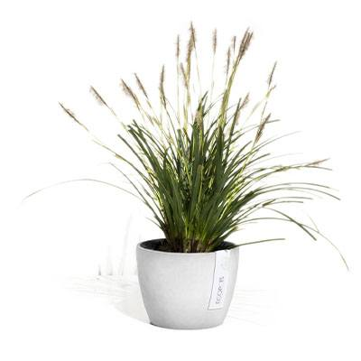 ECOPOTS Stockholm small flower and herb pot White