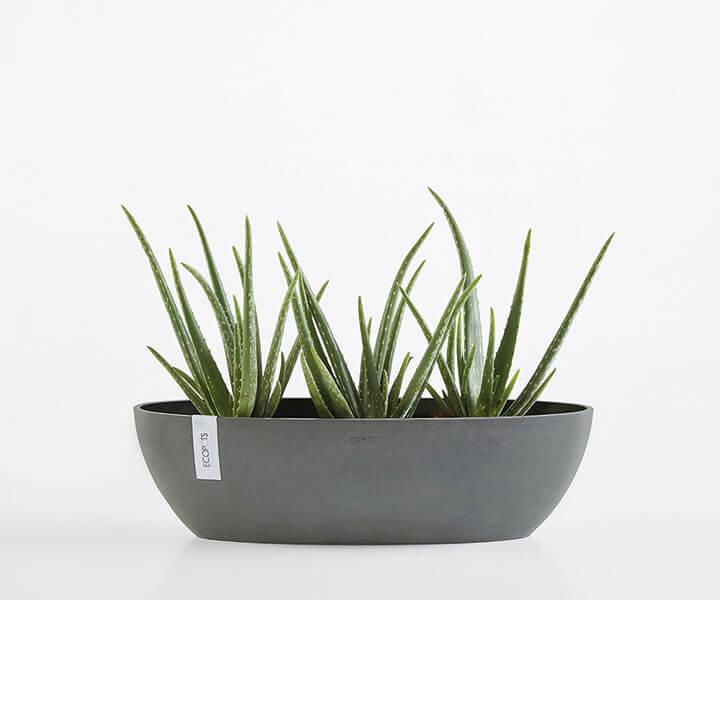 ECOPOT Sustainable Plant Pots